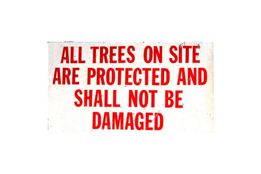 ALL TREES ON SITE ARE PROTECTED